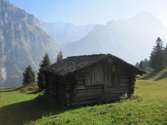 Grindelwald, سويسرا: Brot to Grindelwald scooter ride