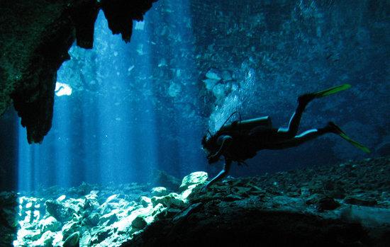 Mayan Ecotours : Buceo en Cenotes
