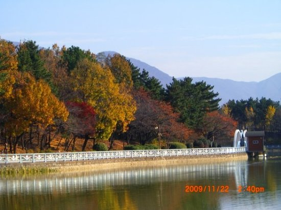 One of better photos I have ever taken... Yongi Lake,Cha'ngwon-City, Gyeongsangnam-do, South Kor