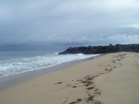 Halls Head Beach