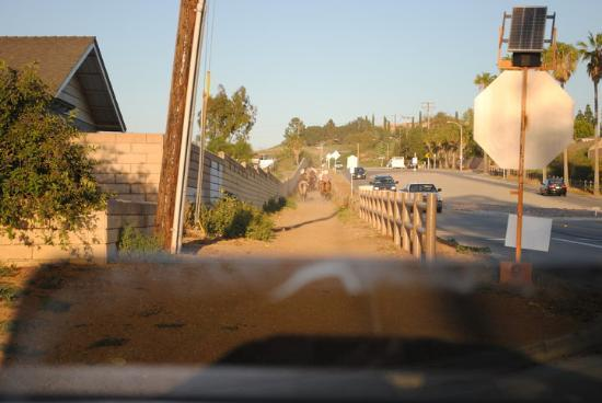 Norco Ca. Look at the sidewalks, all dirt for the horses