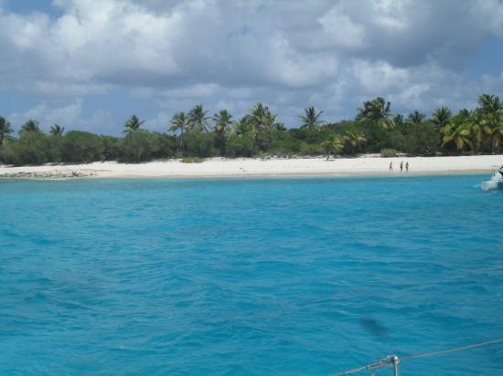 Jost Van Dyke: Green Cay, British Virgin Islands 3/21/10