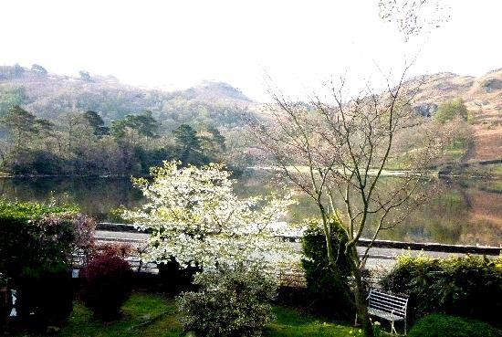 Nab Cottage: Another view from our bedroom showing part of the cottage's garden and Loughrigg Fell