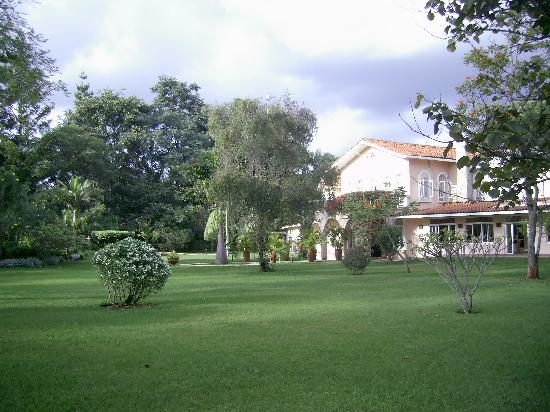House of Waine from the garden