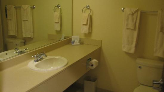 The Lodge at Rolling Hills: Plain - one sink bath