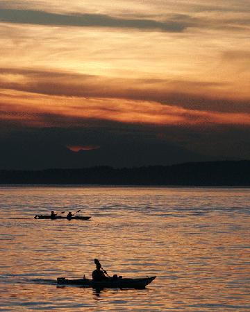 Alki Kayak Tours: Sunset Kayak Tour with stellar views.