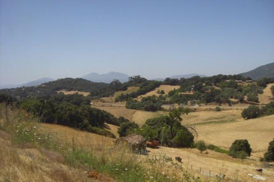 24.07.2009 - Ajaccio / Korsika