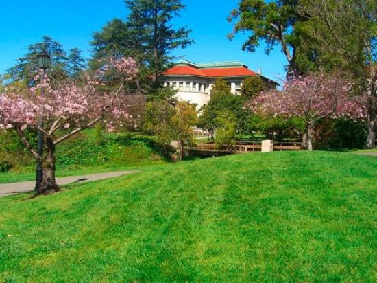 University of California, Berkeley: UC Berkeley campus