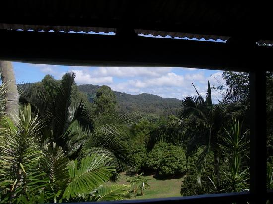 Musavale Lodge : The View