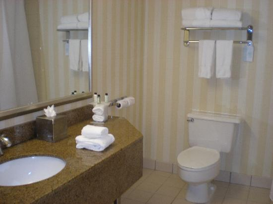 Bathroom picture of embassy suites by hilton boca raton for Bathroom suites direct