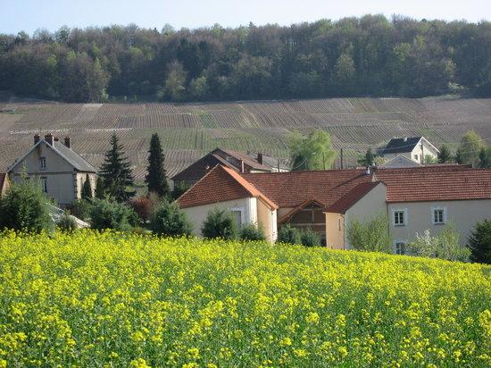 Cuis, France : La domaine du Chateau