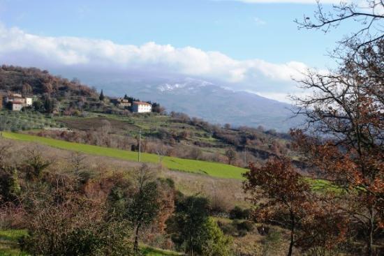 Arezzo Photo