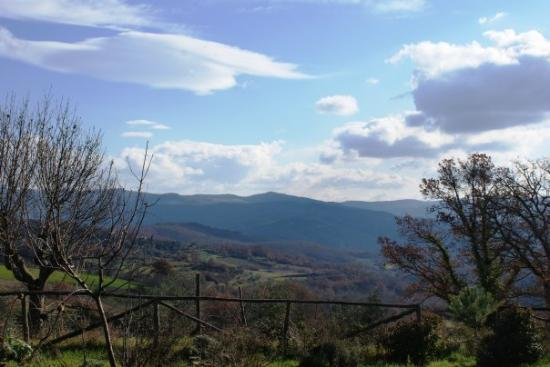 Arezzo-bild