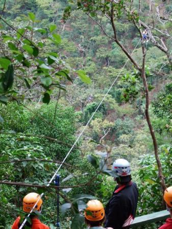 Apaneca Canopy Tour Foto