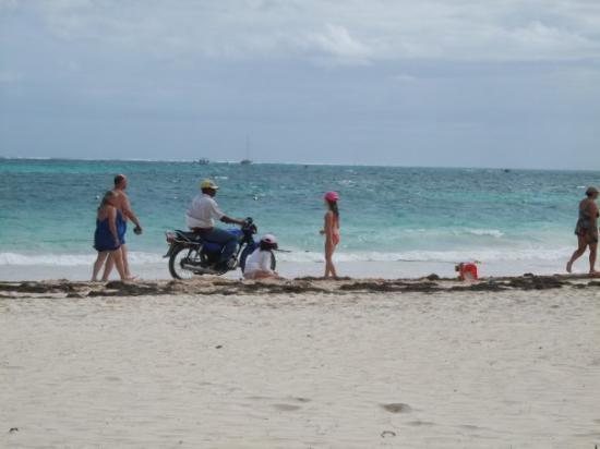 Bavaro Beach: 30 janvier 2010 Une tite moto sur la plage