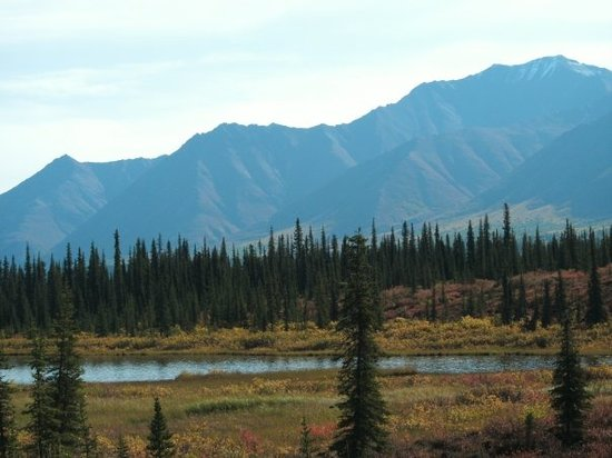 Fairbanks Pictures Traveler Photos Of Fairbanks Ak Tripadvisor