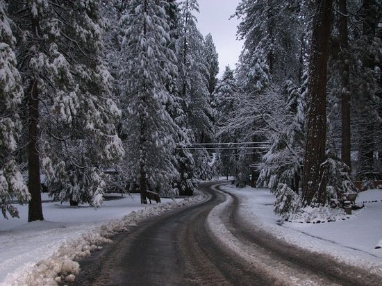 Twain Harte, CA: 6:00 am after a fresh snow fall