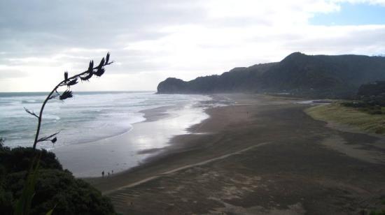 Dunedin, New Zealand: black sand beach =]