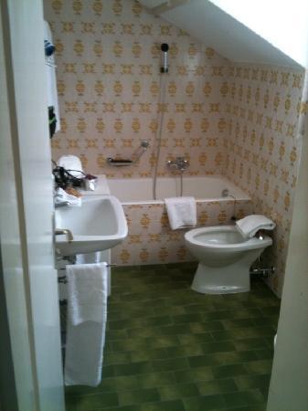 Hotel Tamaro : Tamaro Ascona - WC