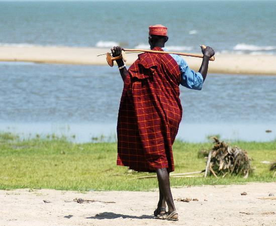 Lake Turkana: elye springs