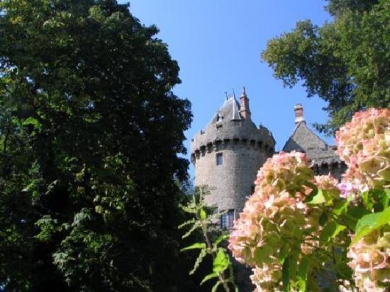 Château de Combourg : au milieu des felurs...