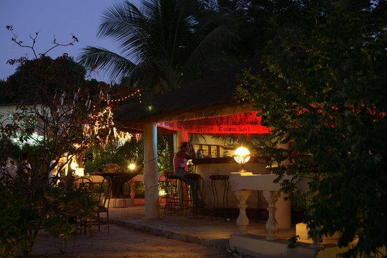 The Green Mamba Garden: Main bar setting