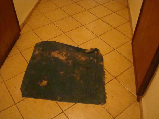 Brisas del Caribe Hotel: Esta alfombra cerca de la puerta de mi Hab. servía para recoger el agua que del pasillo superior