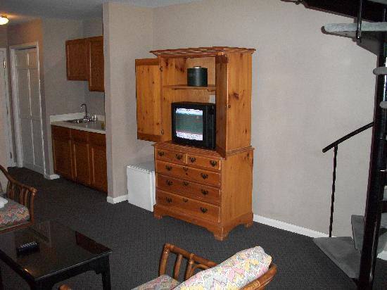 The Inn At Claussen's: Old little tiny TV & Mini Fridge next to it!