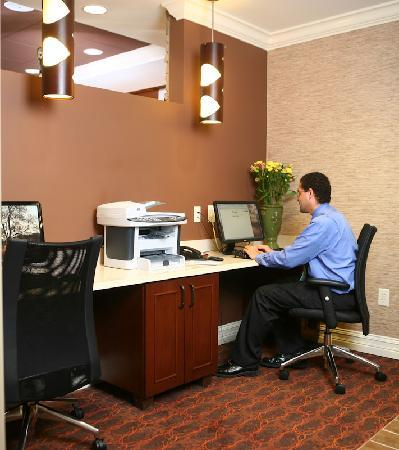Hampton Inn Atlanta Canton: Business Center