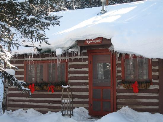 Pioneer Guest Cabins: Red Fox Cabin