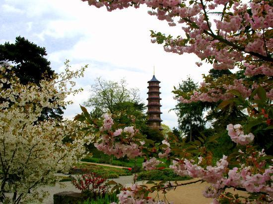 Royal Botanic Gardens, Kew: Japanese influences