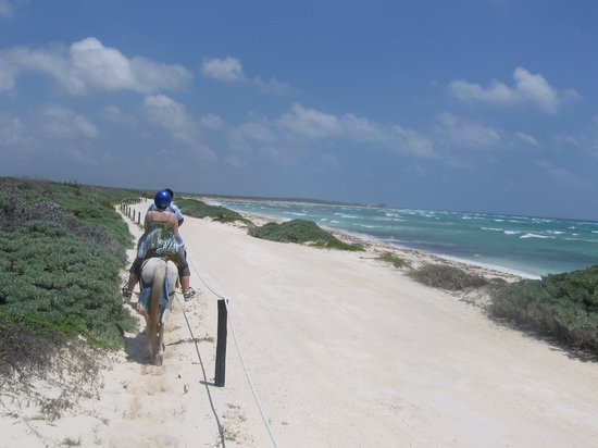 Cozumel, Mexico: the ride on the beach