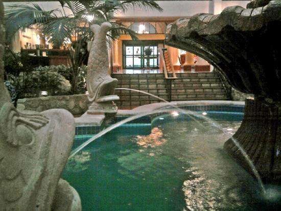 Fish at the fountains picture of embassy suites by - 2 bedroom suites in schaumburg il ...