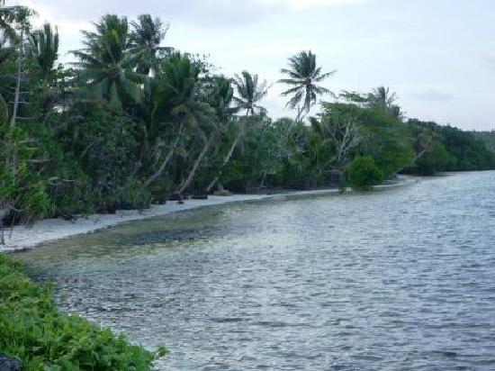 Pacific Treelodge Resort: beaches at Kosrae