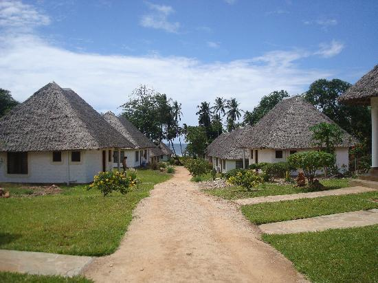 Simba + Oryx Beach Cottages: The Cottages