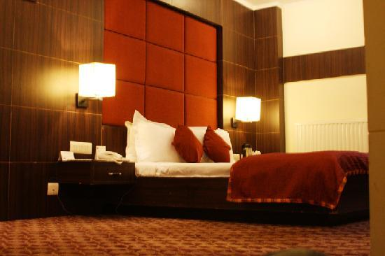 Quality Inn and Suites River Country Resort: Elegent Rooms