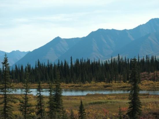 Fairbanks Foto