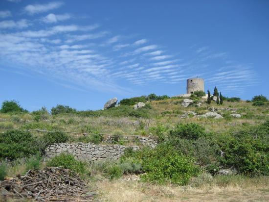 Isola Del Giglio, Italia: Isola di Giglio, Italien