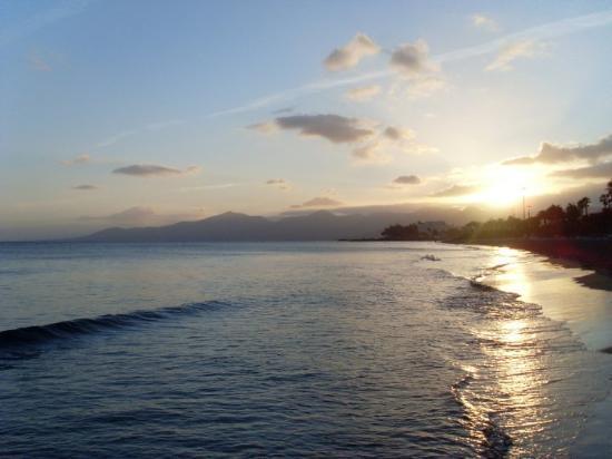 Puerto Del Carmen, Espagne : Tidy.