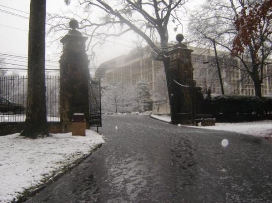 Emory University Bild