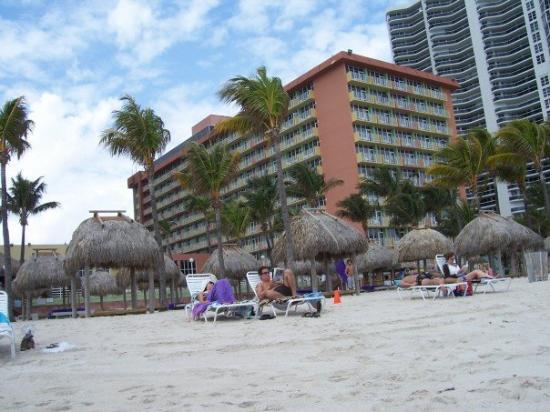Sunny Isles Beach, FL: Our resort's beach