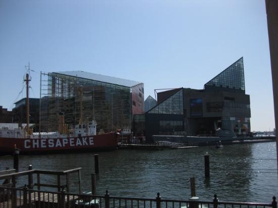 National Aquarium: Baltimore Aquarium