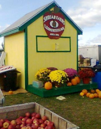 Sholan Farm in Leominster.  Best apples in the world!