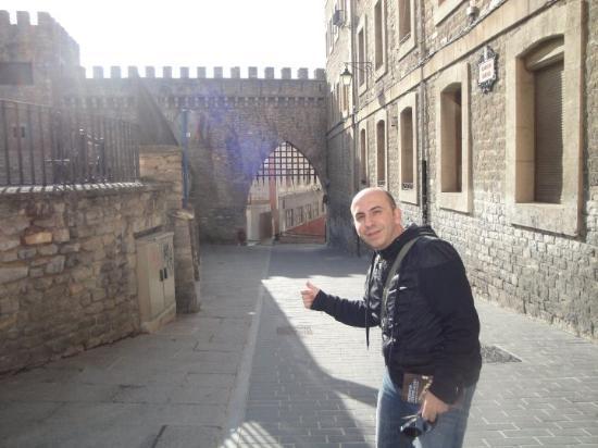 Vitoria-Gasteiz, España: Puerta de la muralla.