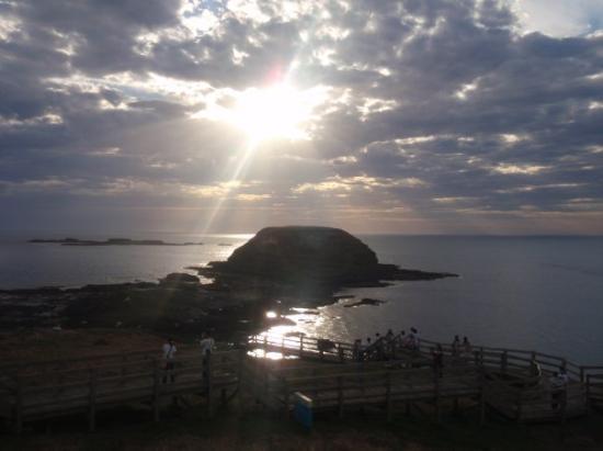 Phillip Island, Australië: Phillip[ Island