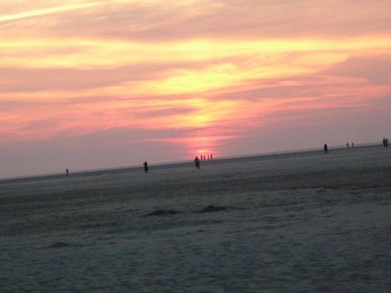 Texel Photo