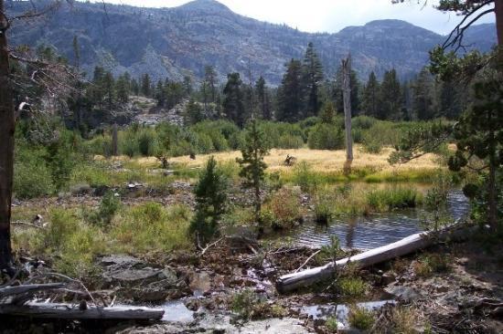 Tahoe Rim Trail: Tahoe Sep. 09