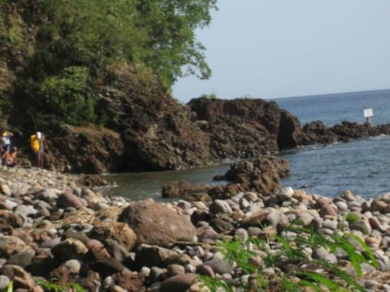 Dominica: Champagne Reef