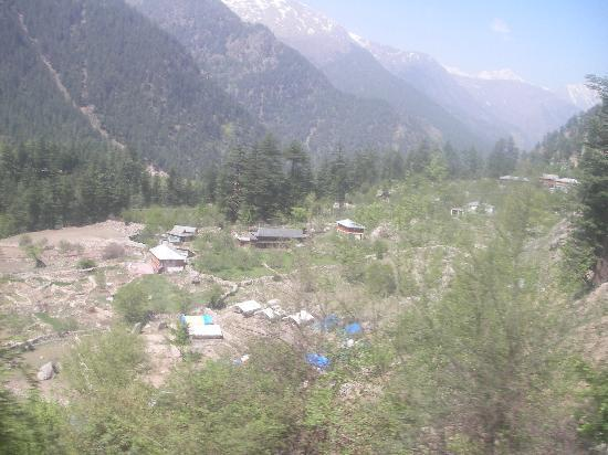 Kinner Camp Sangla: camp view from main road