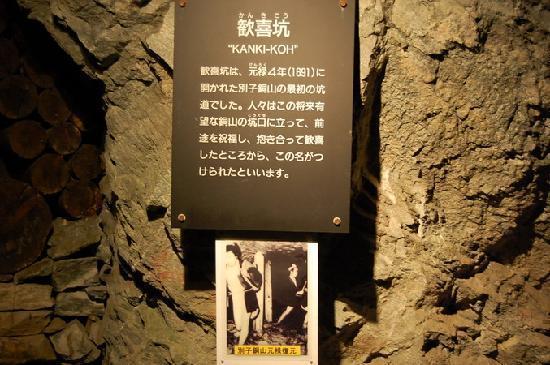 Mine Topia Besshi: 洞窟の中